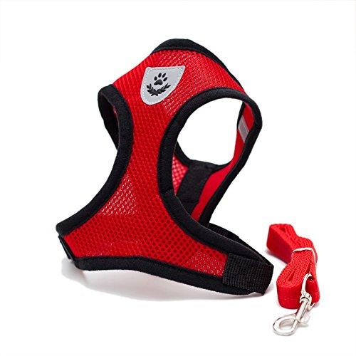 Mesh-hundegeschirr Medium (Locisne Mesh Gewebe Hundeweste Harness Weich Einstellbare Komfortable | Pet Lead-Brust Gehen Leine mit Clip (Medium, Rot))