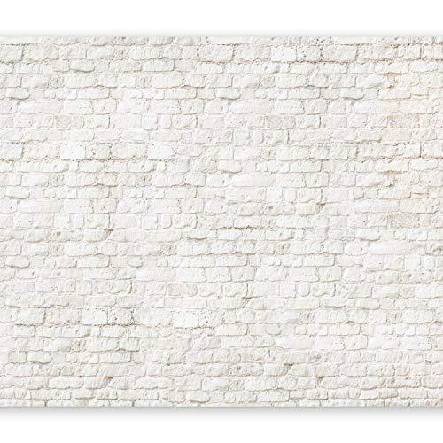 murando - Fototapete Ziegel 400x280 cm - Vlies Tapete - Moderne Wanddeko - Design Tapete - Wandtapete - Wand Dekoration - Steine f-A-0004-a-d