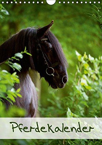 Pferdekalender (Wandkalender 2019 DIN A4 hoch): Schöner Hochformat-Pferdekalender mit 13 Motiven (Monatskalender, 14 Seiten ) (CALVENDO Tiere)