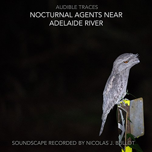 Traces, Audible, Australia, near Adelaide River (NT), nocturnal agents near Adelaide River, 28 April 2018, movement II