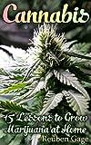 Cannabis: 15 Lessons to Grow Marijuana at Home