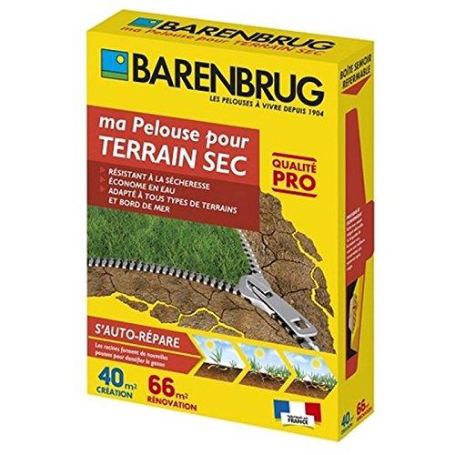 Pelouse pour terrain sec 1Kg Barenbrug Qualité Pro