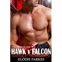 Hawk v Falcon: Surprise at the Candy Apple (At the Candy Apple Series Book 3)