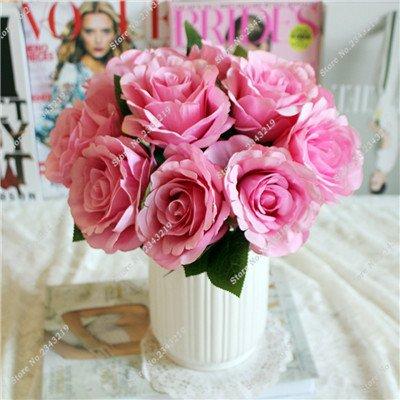 Exotique Miniature Bonsai Fleur Rose Rosas Graine Bricolage jardin et maison embellissant de purification d'air 110 Pcs/Sac 19