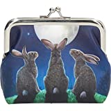 Coin Purse Moon Shadows by Lisa Parker - Nemesis Now Gothic Fantasy Witch Magic Magical Mystical Spiritual Wicca Wiccan Hares Cash Money