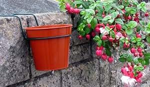 support pour pot accrocher au mur plantes lot de 6 fleurs de 15 cm pour pots big dreams. Black Bedroom Furniture Sets. Home Design Ideas