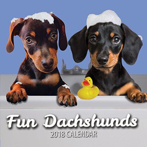 Fun Dachshunds 2018 Dachshund Wall Calendar