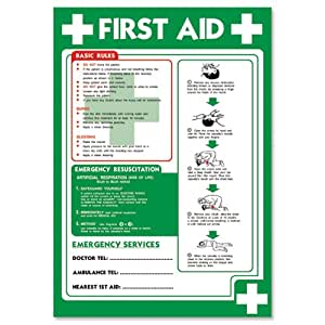 Stewart Superior Health and Safety Poster Laminated First Aid H420xW595mm Ref NS032 HS014