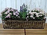Blumenkasten Balkon zum hängen am Geländer - Blumenkorb - Pflanzkasten