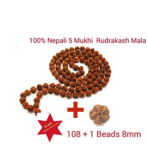 100 % Original Nepal 5 Mukhi Rudraksha Mala 108 +1 Beads Each Beads (8 mm ) Length 36 Inches With 5 Mukhi Rudraksha (22 mm) As a Gifit  available at amazon for Rs.523