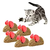 Zerlar Natur Nepeta Cataria Cat Toys Katzenspielzeug Mäuse Maus Interaktives Spielen Spielzeug Pet Supplies 5 Stück