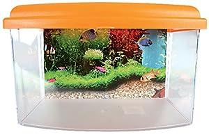 Zolux TravelBox II Aquarium für Transport/Kinderzimmer für Aquaristik 22cm.
