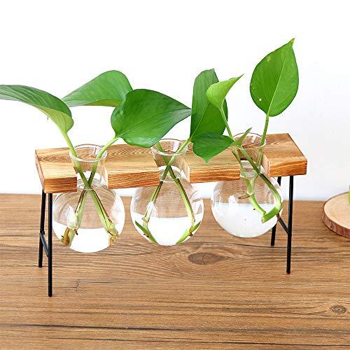 Gaddrt plant trasparente vaso creativo idroponica cornice in legno coffee shop decorazione della stanza e