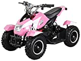Actionbikes Motors Mini Kinder Elektro Quad ATV Cobra 800 Watt 36 V Pocket Quad - Original Saftey Touch - Kinder E...