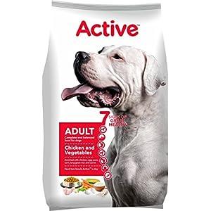 Active Adult Dog Food