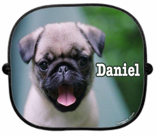 con-un-diseno-perzonalizable-con-nombre-y-diseno-de-perro-de-raza-carlino-radio-de-coche-perfectdart