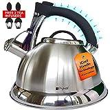 Pykal fluitketel met iCool-handvat | Roestvrijstalen theeketel voor alle kookplaten | 2 gratis theezeefjes inbegrepen | 3L