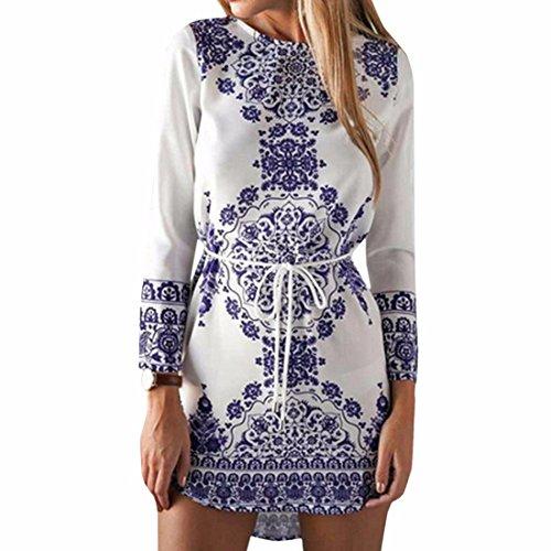QIYUN.Z Blu E Bianco Porcellana Donne Di Stile Manica Lunga Orlo Irregolare Vestiti Corti
