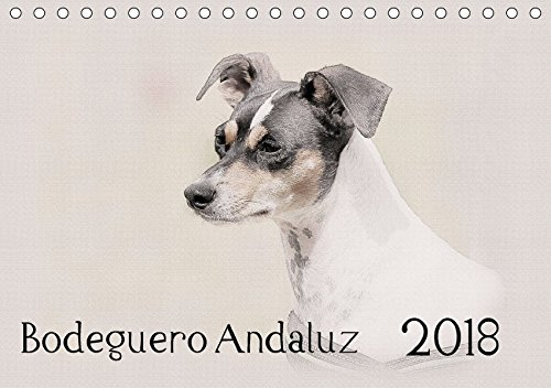 Bodeguero Andaluz 2018 (Tischkalender 2018 DIN A5 quer): Bodegueros - Wunderschön gestalteter Kalender. Jedes Monatsmotiv gleicht einem kleinen ... [Kalender] [Apr 01, 2017] Redecker, Andrea