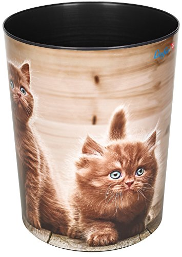 Läufer 26661 Motiv-Papierkorb Neugierige Kätzchen, Katzen, 13 Liter Mülleimer, perfekt für das Kinderzimmer, rund, stabiler Kunststoff -