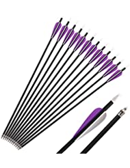 Huntingdoor 12 Pcs Heavy Duty Carbon Fiber Archery Arrow 350 Spine with 100 Grain Screw in Tips for Crossbow Hunting Target Practice Archery 32 INCH