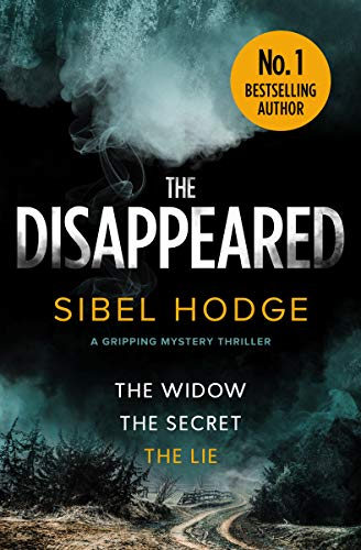 The Disappeared: a gripping mystery thriller by [Hodge, Sibel]