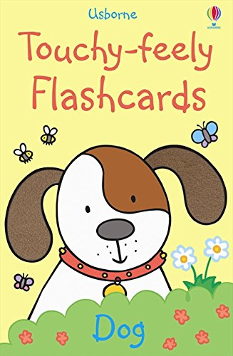 Touchy-Feely Flashcards por Fiona Watt
