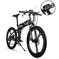riche Bits® Rt-86036V * 250W 12,8Ah/8ah Vélo électrique Montagne Vélo VTT E Vélo batterie au lithium–fer 21vitesses Shimano 66cm Vélo pliable en magnésium Intégré de roue grises