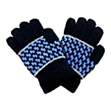 DCS (16)Hand Gloves Navy Blue Color For ...