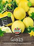 Salatgurken Lemon (Zitronengurke)