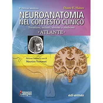 Neuroanatomia Nel Contesto Clinico. Strutture, Sezioni, Sistemi E Sindromi. Atlante
