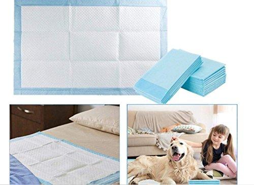 SMACO Einweg-Haustier Windeln Saugfähigen Haustier Urin-Pad Deodorant Einweg Hund Windeln,XL