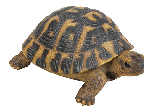 vivid-arts-xrl-herm-b-hermann-tortoise-resin-ornament