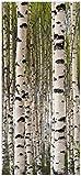 Wallario Selbstklebende Türtapete Birkenwald - Baumstämme in schwarz weiß - 100 x 220 cm in Premium-Qualität: Abwischbar, Brillante Farben, rückstandsfrei zu entfernen