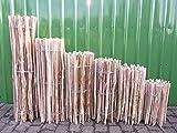 BIHL Staketenzaun Lärche in 12 verschiedenen Größen 5 m (500 cm) (150 x 500 cm (Lattenabstand: 3-5 cm))
