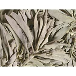 Premium Quality Hand Picked Californian White Sage Smudge Clusters (50 Grams)
