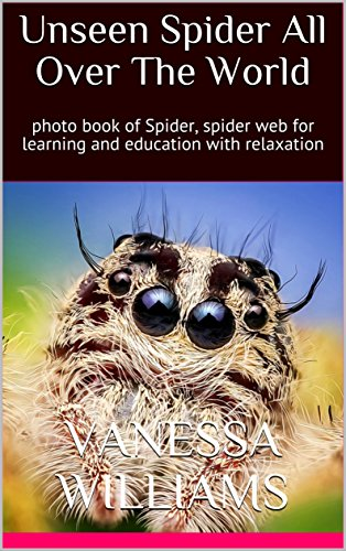 unseen-spider-all-over-the-world-photo-book-of-spider-spider-web-for-learning-and-education-with-rel