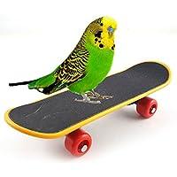 Bird Parrot Inteligencia Juguete Mini monopatín de capacitación para Parrot periquito periquito Cockatiels Agapornis Conure pequeño y mediano Perca pájaro divertido juguete