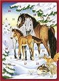 Pferde im Winterwald: Adventskalender