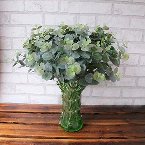 QUEENCE »Eukalyptus Pflanze«,
