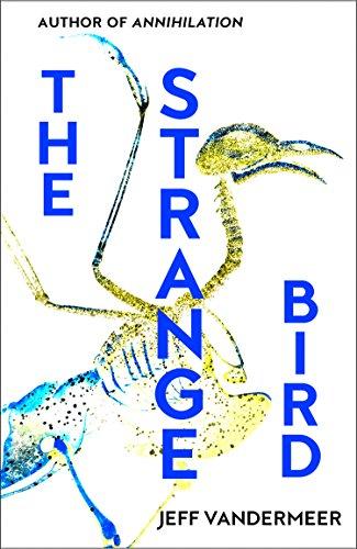 The Strange Bird (Wake Forest-player)