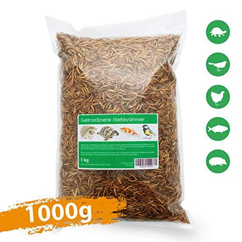 Svänimal 1KG Getrocknete Mehlwürmer, Futter für Insekten, Vögel, Reptilien, Kleintiere, Leckerli, Proteinfutter