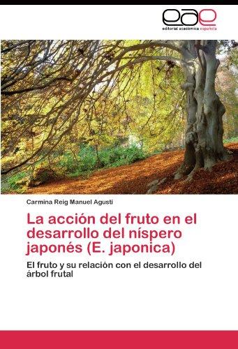 La acción del fruto en el desarrollo del níspero japonés (E. japonica) por Manuel Agustí Carmina Reig