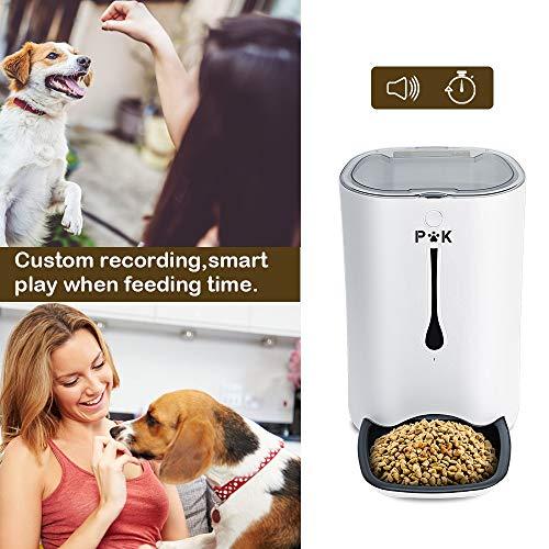 Zoom IMG-1 puppy kitty 6 5l alimentatore