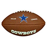NFL Mini Team Logo Ball