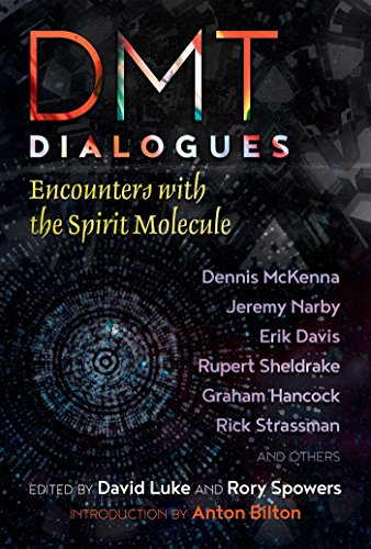 DMT Dialogues: Encounters with the Spirit Molecule (English Edition)