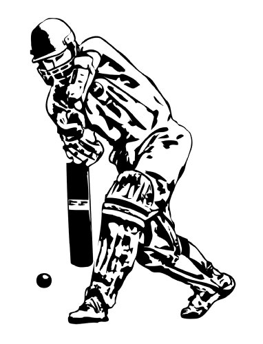 Recreation and Sports: Cricket (English Edition) por David  Beckham1