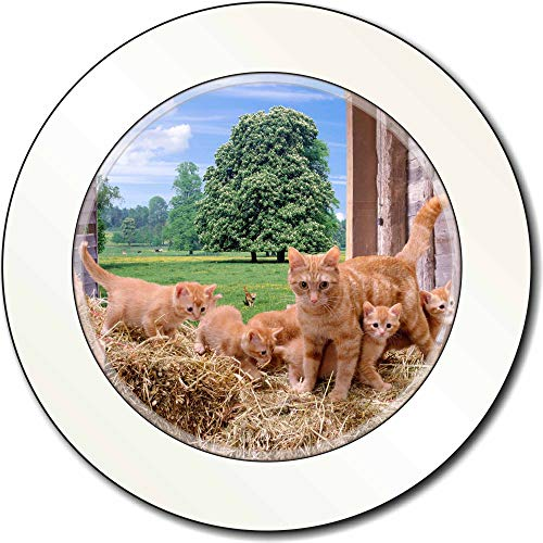 Advanta - Tax Disc Holders Ingwer-Katze und Kätzchen in Scheune AutovignetteGenehmigungsinhaber Geschenk -