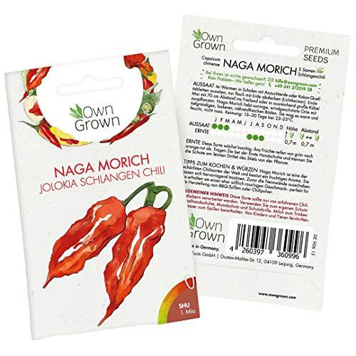 Chili Samen Naga Morich: 5 Premium Naga Morich Samen zum Anbau von Chili Pflanzen für Balkon und Garten - Chilli Samen extrem scharf für die Anzucht frischer Jolokia Chili, von OwnGrown