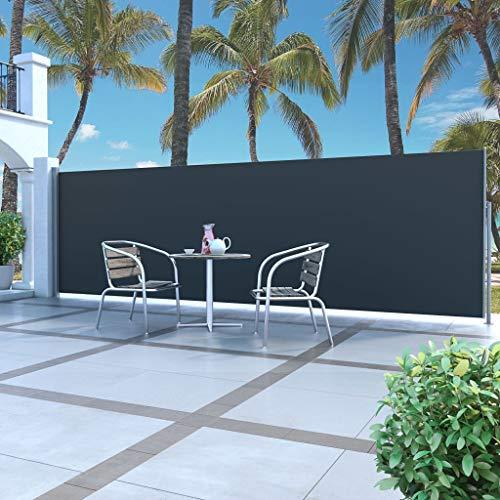 vidaXL Seitenmarkise 180x500cm Sichtschutz Windschutz Sonnenschutz Markise